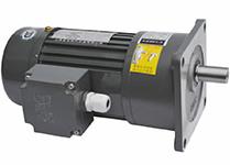 立体车库专用减速电机(TZF22-0.2KW)